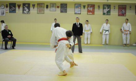 [Wyniki zawodów] Wojewódzki Finał Gimnazjady w Judo [07.05.2014]