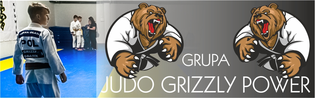 [Grizzly Judo Power] Informacje o projekcie