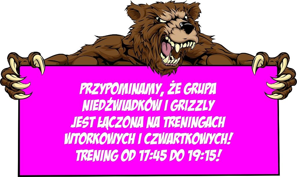 [Treningi] Łączenie treningów grup Niedźwiadków i Grizzly we wtorki i czwartki [17:45-19:15]