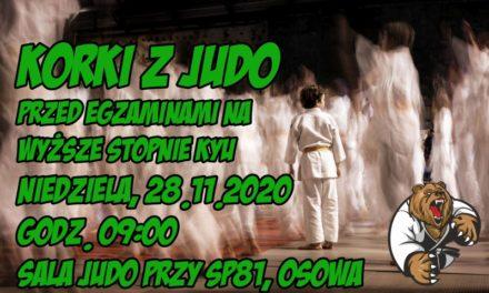 Korki z judo przez egzaminami na wyższe stopnie KYU [niedziela, 28.11.2020]